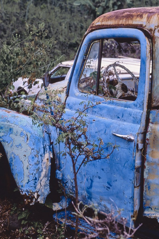 Vertical photo of a 1940s vintage pickup truck that has been abandoned on the island of Maui, Hawaii. The photo was taken from the left side of the truck, just behind the driver's door. The front of the truck points to the image's left. This is a tight shot of the driver's door, cab, and left front fender. The truck's hood has been removed. The driver's side door has been spray painted a deep azure blue—which makes the truck stand out against the rusty brown cab roof. A shiny chrome door handle contrasts brightly against the blue door. Paint on the truck's left front fender, the same deep azure blue, flakes away in large sheets, exposing the original light blue color underneath. A white flaking steering wheel can be seen through the driver's window in the interior of the truck.