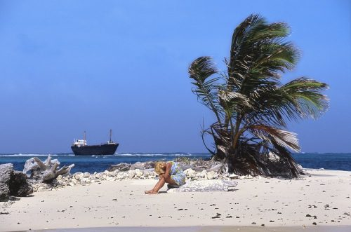 Shipwreck. This image is a medium landscape photo of a tiny island in the Guna Yala region of Panama. The island, covered in white sand, is about 50-feet long. A lone green palm tree with six palm fronds juts out of the sand 15-feet into the air. A woman sits on a bleached-out log to the left and slightly in front of the palm tree—her head buried into her arms which rest on her knees. Her medium-length blond hair covers her face. Several hundred yards in the distance we see a large container ship, listing to port, that has run aground onto a reef.