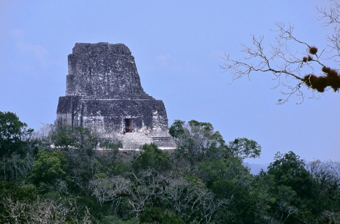Tikal, Guatemala. A zoom shot taken from a nearby pyramid shows the roof comb of Temple IV (Temple of the Double Headed Serpent)—at a height of 212-feet. The roof comb, which appears in the left third of the image, floats over lush green trees below it. A cloudless blue sky provides a colorful background. We see several people standing inside the doorway of the dark gray roof comb.