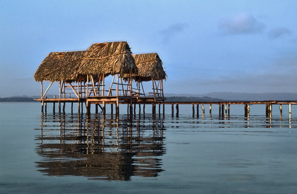 This landscape photo, from the Boca del Toro region of Panama, shows a wooden pier jutting out from the right side of the image. The pier's walkway is exactly on the horizon line. At the end of the pier, almost on the left side of the image, we see three separate thatched roofs held up by thin log supports. A soft golden light from the setting sun highlight the thin edge of the pier and thatched roofs facing the camera. The water, a muddy blue-teal pastel, is calm except for long ripples that turn the reflected roofs into dark brown, striated streaks on the surface. A bright blue sky provides a colorful contrast to the bright golden thatched roofs.