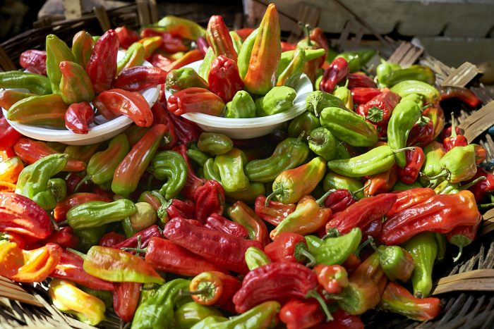 A 3-foot wide, shallow basket, made of out thick twigs, shows off 100 or more colorful Mexican peppers that fill the screen with green, yellow, orange, and bright red. Two small, white plastic bowls sit atop the stack of peppers with additional peppers arranged into a design like an opening flower—some leaning over the side of the bowl, and some pointing upwards.